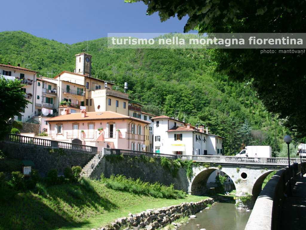 a picture from the web of the Florence countryside where the author lives.